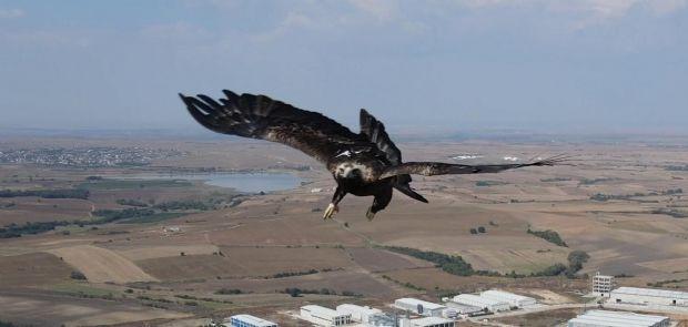 KARTALIN DRONE'A SALDIRISI KAMERADA